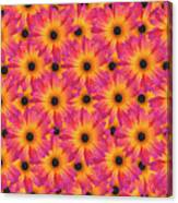 Pattern Of African Daisies Canvas Print
