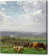 Paturage En Auvergne Canvas Print