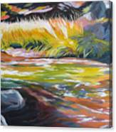Paulina Creek Canvas Print