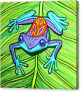 Peace Frog On A Leaf Canvas Print