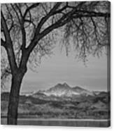 Peaceful Early Morning Sunrise Longs Peak View Bw Canvas Print