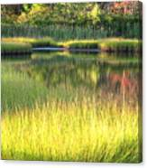 Peaceful Marsh Canvas Print