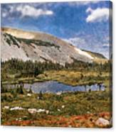 Peaceful Meadow  Canvas Print