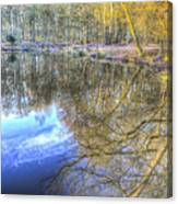 Peaceful Pond Reflections  Canvas Print