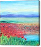 Peaceful Poppies Canvas Print