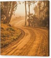 Peaceful Tasmania Country Road Canvas Print
