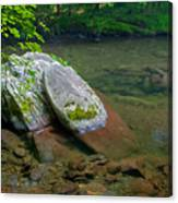 Peaceful Transparency. Canvas Print