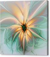 Peach Allure Canvas Print