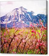 Peach Blossoms And Mount Lamborn II Canvas Print
