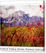 Peach Blossoms And Mount Lamborn Orchard Valley Farms Canvas Print