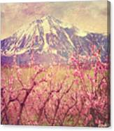 Peach Booms And Mount Lamborn Canvas Print