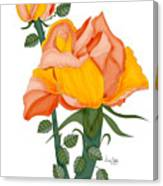 Peaches and Creme Canvas Print