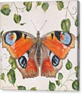 Peacock Butterfly-jp3878 Canvas Print
