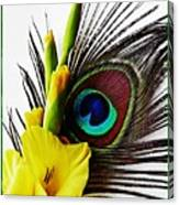Peacock Feather And Gladiola 3 Canvas Print