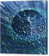 Peacock Feather Macro Waterdrops Canvas Print