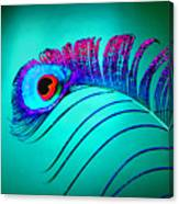 Peacock Feathers 5 Canvas Print