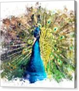 Peacock Watercolor Painting Canvas Print