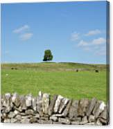 Peak District Landscape Canvas Print