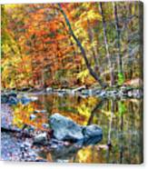 Peak Fall Foliage At The Black River Canvas Print