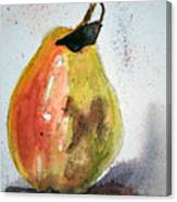 Pear Study Canvas Print