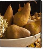 Pears And Hydrangea Still Life  Canvas Print