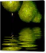 Pears And Its Reflection Canvas Print