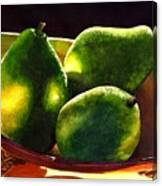 Pears No 2 Canvas Print