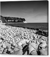 Pebble Beach At Flamborough. Canvas Print