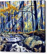 Pebble Creek Autumn Canvas Print