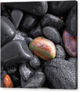 Pebble Jewels   Canvas Print