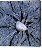 Pebble On The Star In The Log Canvas Print