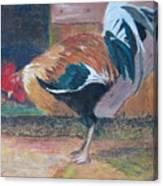 Pecking Around Canvas Print