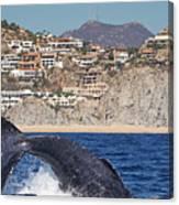 Pedregal - Cabo San Lucas Canvas Print