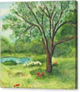 Pedro's Tree Canvas Print