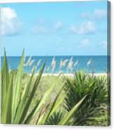 Peeking Sea Canvas Print