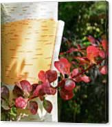 Peeling Bark Of White Birch Tree Canvas Print
