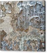 Peeling Wall. Canvas Print