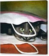 Peeping Out Canvas Print