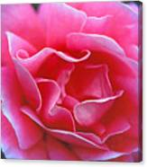 Peggy Lee Rose Bridal Pink Canvas Print
