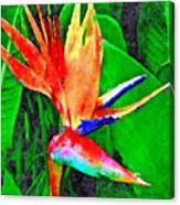 Pele's Fire Canvas Print