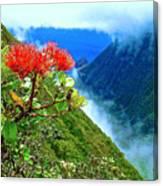 Peles Flower Canvas Print