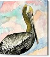 Pelican 2  Canvas Print