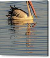 Pelican At Sunset 1 Canvas Print