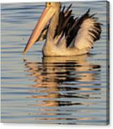 Pelican At Sunset 2 Canvas Print