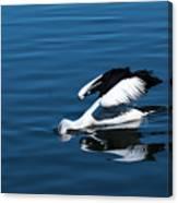 Pelican Fishing 666 Canvas Print