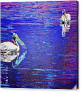 Pelican Mates 2 Canvas Print