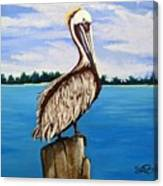 Pelican On Post 2 Canvas Print