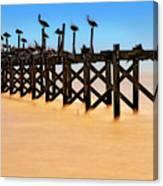 Pelican Pier Near Pass Christian - Mississippi Canvas Print