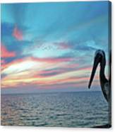 Pelican Sunset Canvas Print
