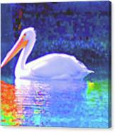 Pelican With Blue Canvas Print